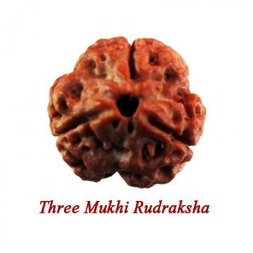 Three Mukhi