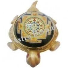 Kachhua Shri Yantra